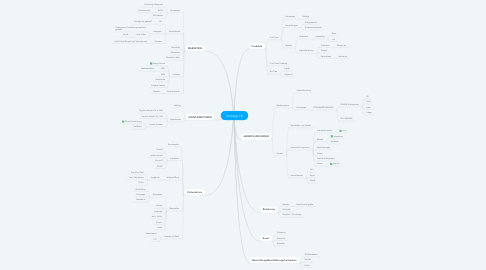 Mind Map: Strategie 18