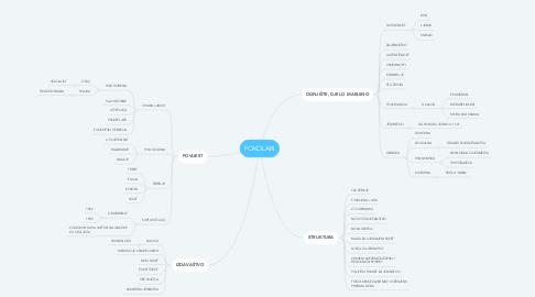 Mind Map: FOKOLARI