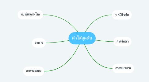 Mind Map: ลำไส้อุดตัน
