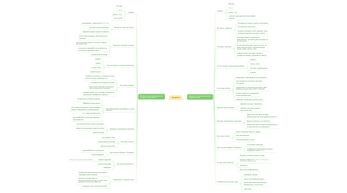 Mind Map: therealreal