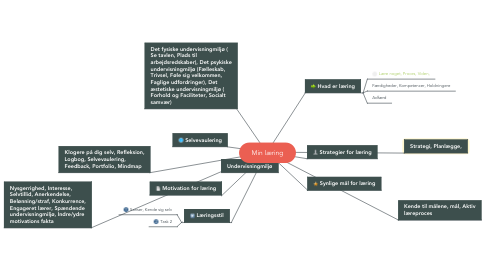Mind Map: Min læring