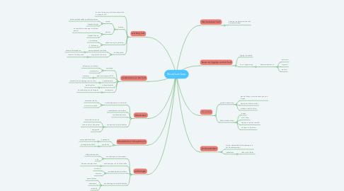 Mind Map: Bloedsomloop