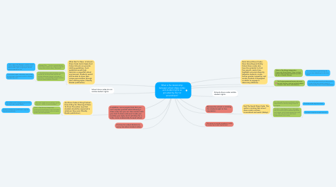 Mind Map: What is the relationship between school dress codes and student rights as provided by the 1st amendment?