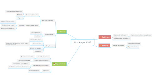 Mind Map: Mon Analyse SWOT