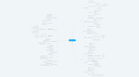 Mind Map: QUATTROCENTO