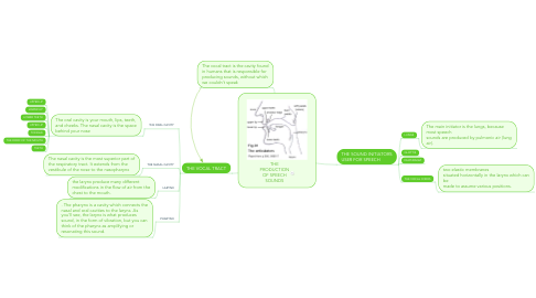 Mind Map: THE PRODUCTION OF SPEECH SOUNDS