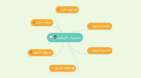 Mind Map: مستويات التنظيم