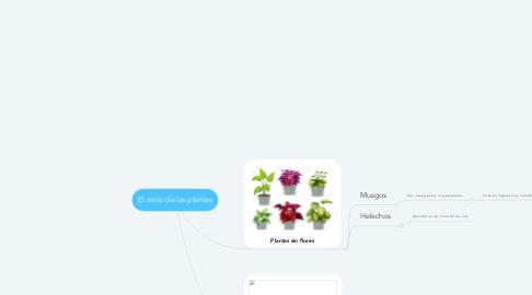 Mind Map: El reino de las plantas