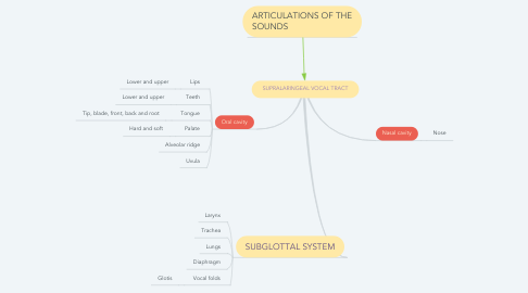 Mind Map: SUPRALARINGEAL VOCAL TRACT