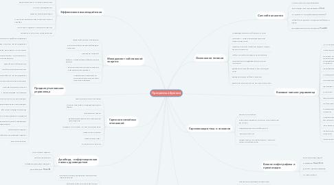 Mind Map: Программа обучения