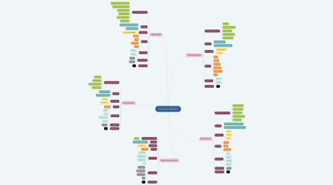 Mind Map: evolutie van de mens