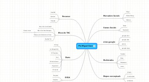 Mind Map: Ple Miguel Sanz