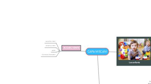 Mind Map: CAPA MISCANI