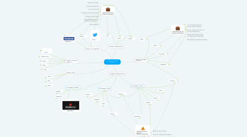 Mind Map: Les différents réseaux sociaux