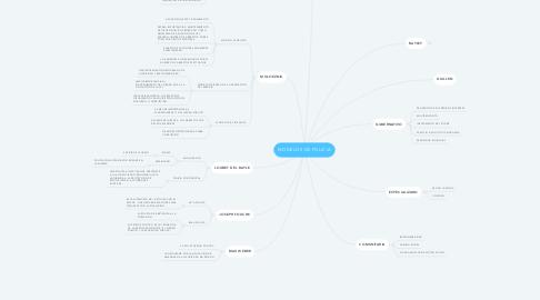 Mind Map: MODELOS DE POLICIA