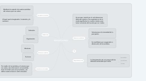 Mind Map: PERCEPCIONES
