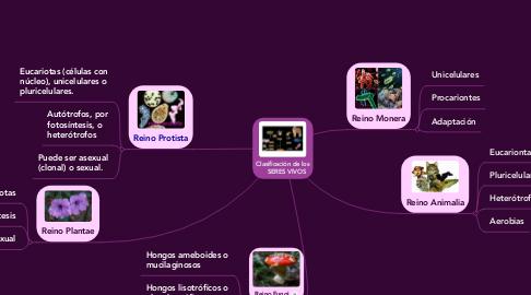 Mind Map: Clasificación de los     SERES VIVOS