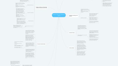 Mind Map: Ofertas, Servicios y Atención UACH