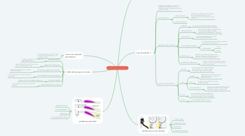 Mind Map: clasificaciòn de motores monofasicos