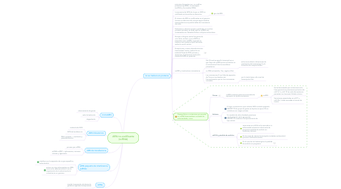 Mind Map: ARN no-codificante (ncRNA)