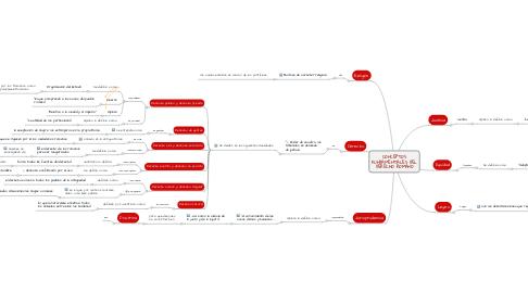 Mind Map: CONCEPTOS FUNDAMENTALES DEL DERECHO ROMANO