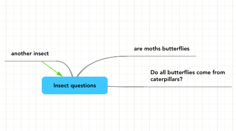 Mind Map: Insect questions