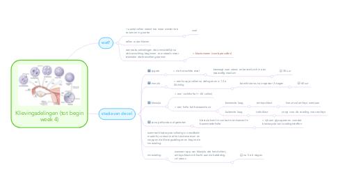 Mind Map: Klievingsdelingen (tot begin week 4)