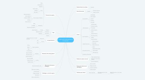 Mind Map: Sistemas de información de la empresa