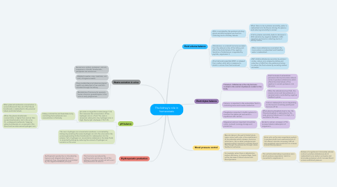 Mind Map: The kidney's role in homeostasis
