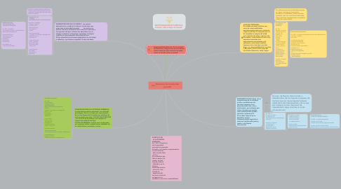 Mind Map: Elementos de la autoridad parental