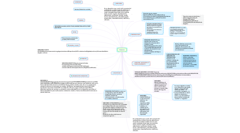 Mind Map: 2.-Primera fase            Pre-inversion