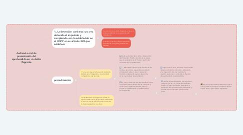 Mind Map: Audiencia oral de presentación del aprehendido en un delito flagrante