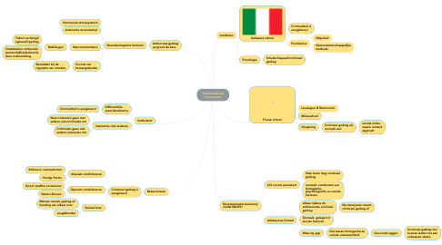 Mind Map: Criminaliteit op microniveau