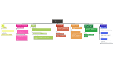 Mind Map: Capial intelectual y dimensiones