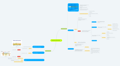 Mind Map: Transporte a Nivel Celular