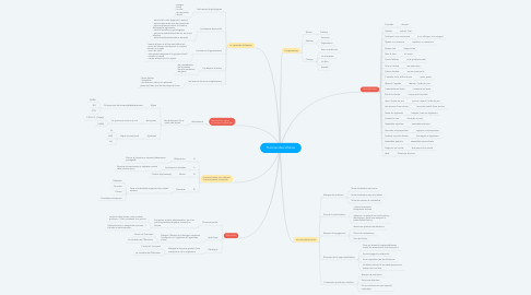 Mind Map: Francais des affaires
