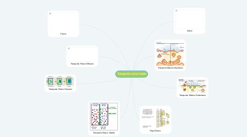 Mind Map: Transporte a nivel celular