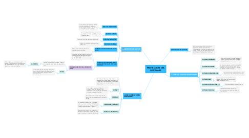 Mind Map: PROTECCION DEL SOFTWARE
