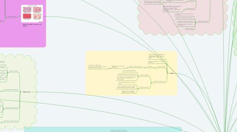 Mind Map: Fisiología celular