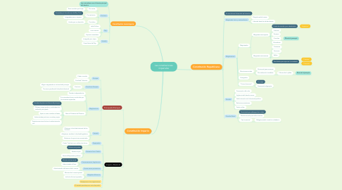 Mind Map: Las constituciones imperiales