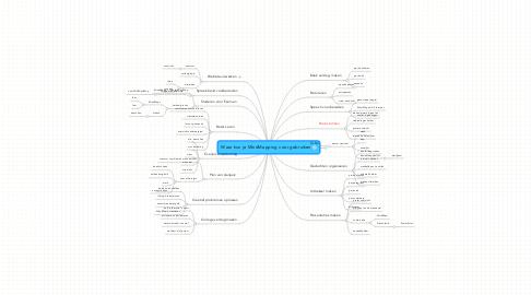 Mind Map: Waar kun je MindMapping voor gebruiken