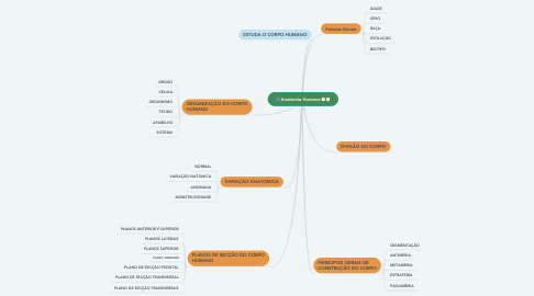 Mind Map: Anatomia Humana