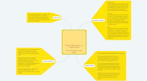 Mind Map: Colony Collapse Disorder: A Tragedy for Bees  By: James, Rebecca, and Kelsey