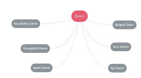 Mind Map: Zamir