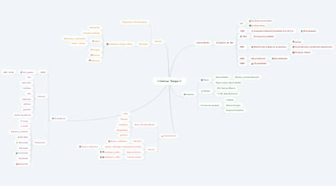 "Mind Map: Camisas ""Ranger´s"""