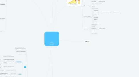 Mind Map: LEG INJURIES