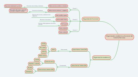 Mind Map: Organización anatómica y funcional del Sistema Nervioso