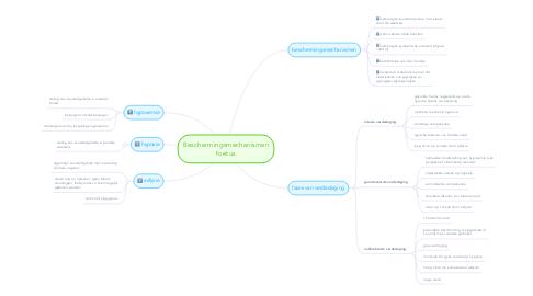 Mind Map: Beschermingsmechanismen foetus