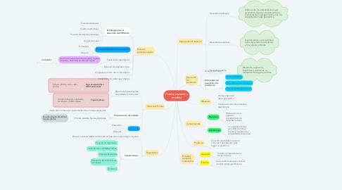 Mind Map: Forma, espacio y medida