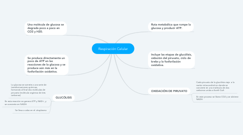 Mind Map: Respiración Celular